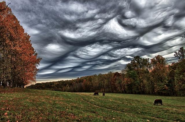 Undulatus-asperatus-nuage-