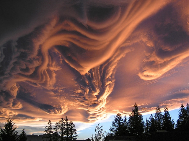 Undulatus-asperatus-nuage-2