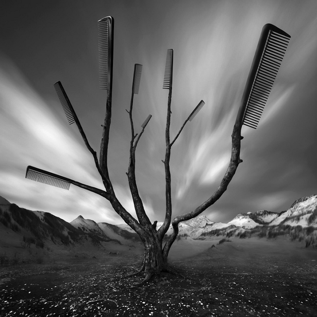 Les Paysages surréalistes de Darius Klimczak
