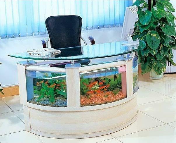 aquariums-poisson-originaux-10