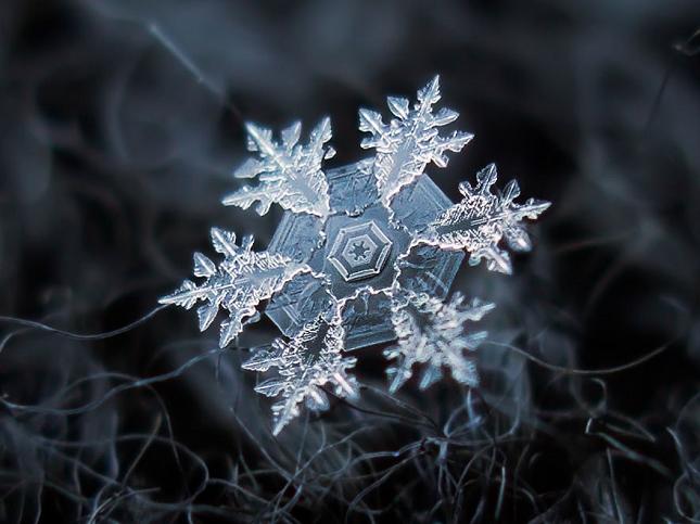 macro-photographie-flocon-de-neige-12