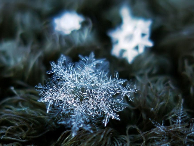 macro-photographie-flocon-de-neige-3