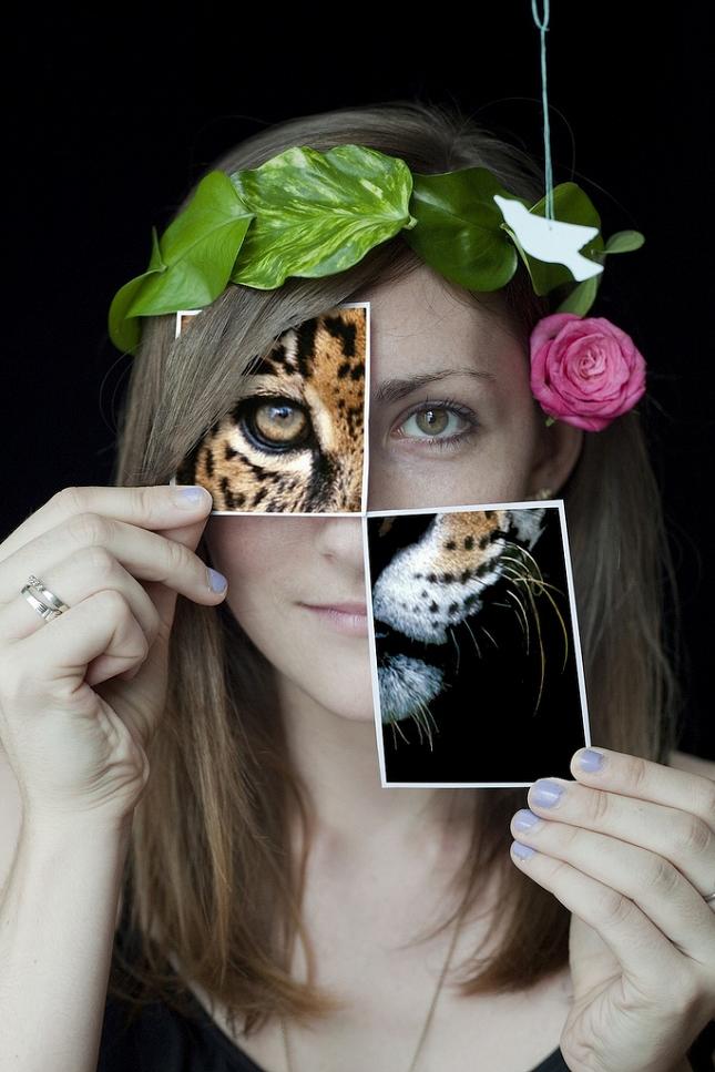 montages-photo-polaroids-taylor sloan 2