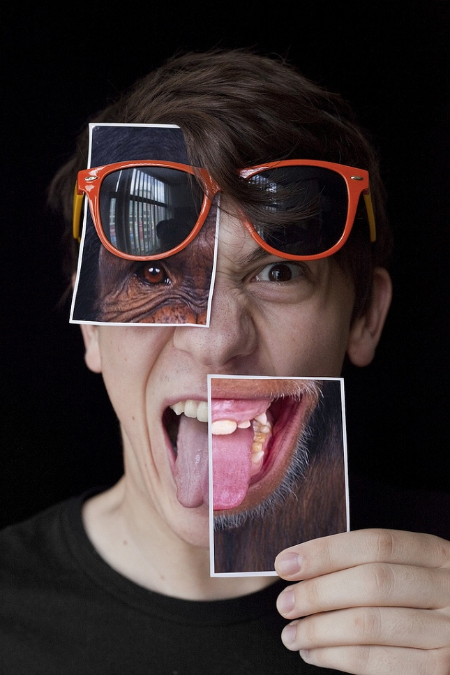 montages-photo-polaroids-taylor sloan 3