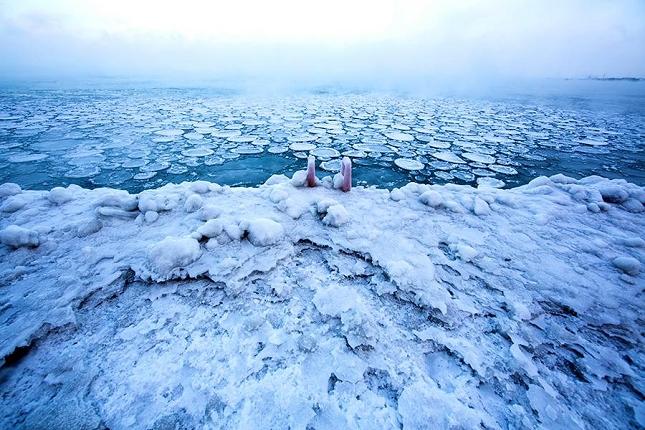 Froid polaire à Chicago-2