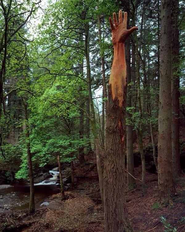 land-art-main-arbre