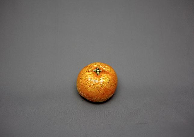 Fruit-peint-orange-1