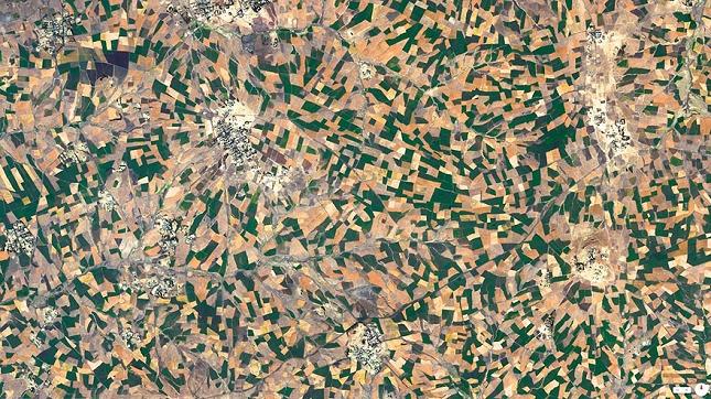 agriculture devellopement- Addis Ababa - Ethiopie