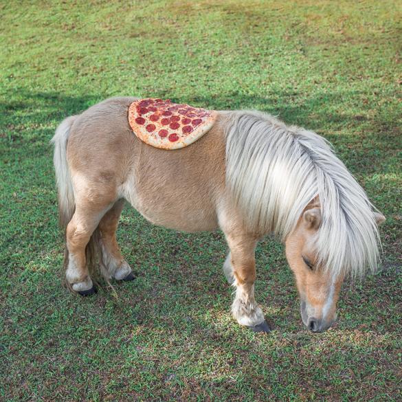 pizza-art-Pizz-art-1