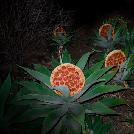 pizza-art-Pizz-art-3