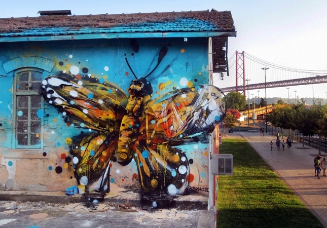 Street-Art-animalie-3D-16