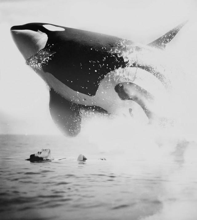 Photo-Manipulations-noir-et-blanc1