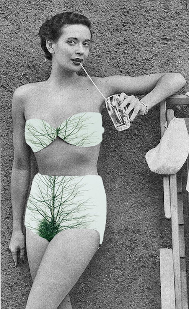 Photo-Collages-Vintages-8