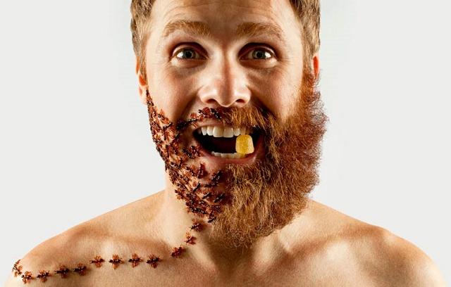 demi-barbe-a-truc-21