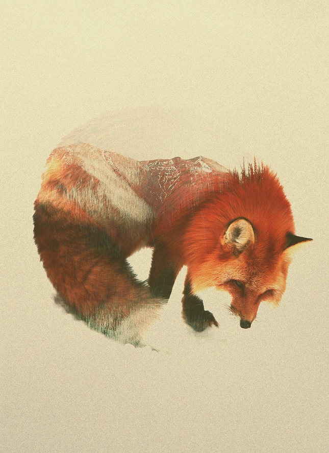 Animaux-paysages-double-exposition-5