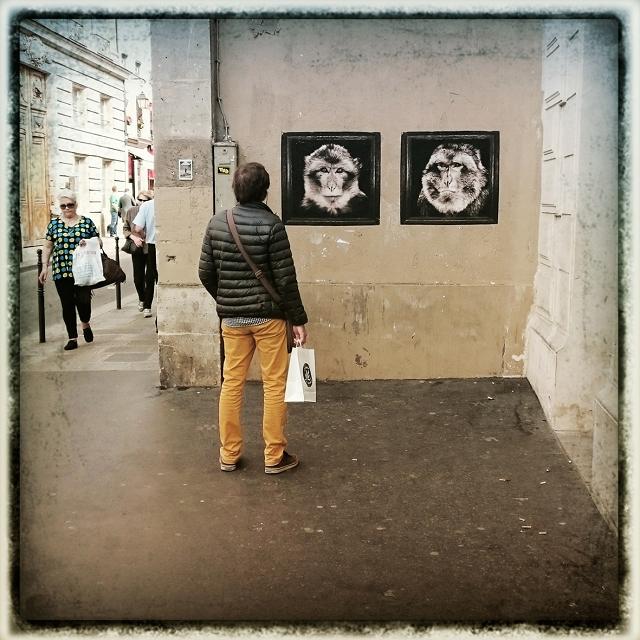 Les Macaques rue des Francs Bourgeois Sophie photographe