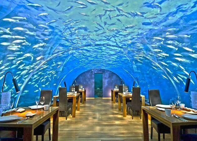Restaurant-insolite-Ithaa Undersea Restaurant, Rangali Island, Maldives