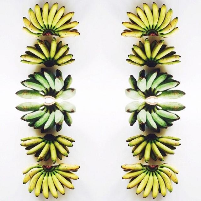 composition-fruit-legume-art6