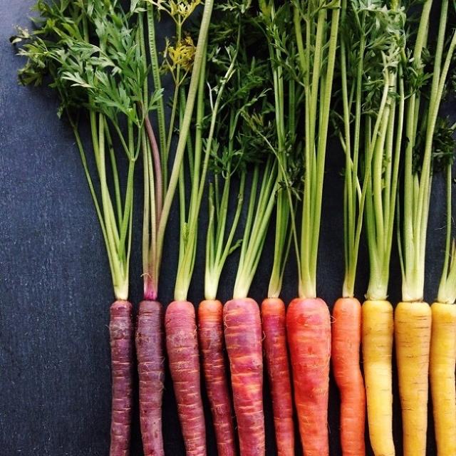 composition-fruit-legume-art7