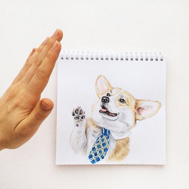 illustration-interactive-2