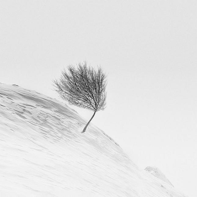 Photo-minimaliste-16