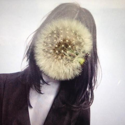 manipulation-visage-Overprint-Daubal-Wikilinks-Galerie-1