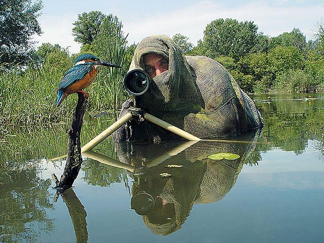 Photographie-animaliere-25