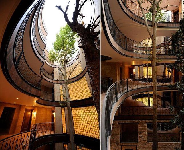 Architecte-Nature-Arbre-12