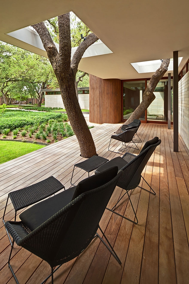 Architecte-Nature-Arbre-13