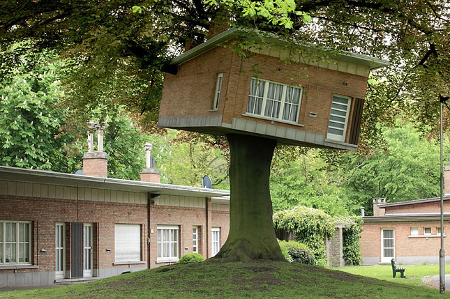 Architecte-Nature-Arbre-3