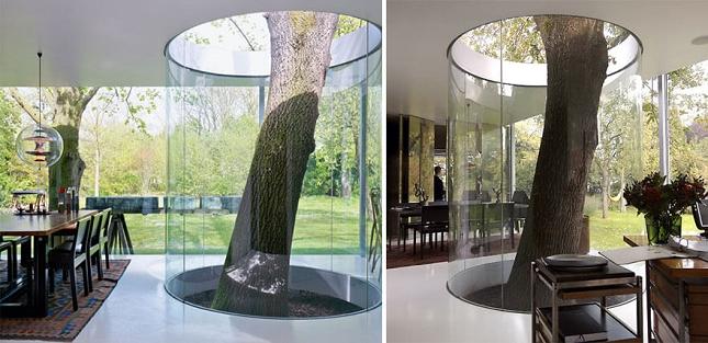 Architecte-Nature-Arbre-5