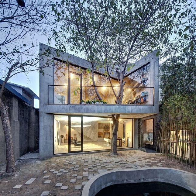 Architecte-Nature-Arbre-9