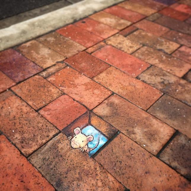 dessins a la craie - street art-7