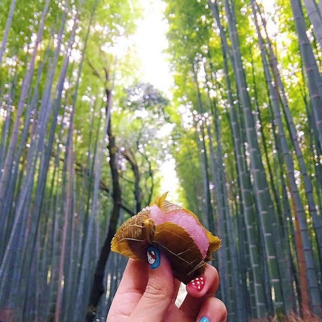 Mochi Sakura à Arashiyama Bamboo Forest à Kyoto