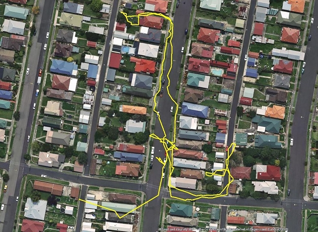 Chat-Nuit-parcour-distance-deplacemant-GPS-1