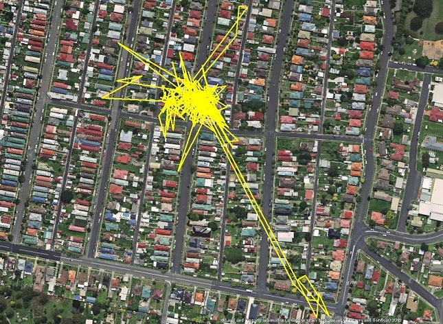 Chat-Nuit-parcour-distance-deplacemant-GPS-4