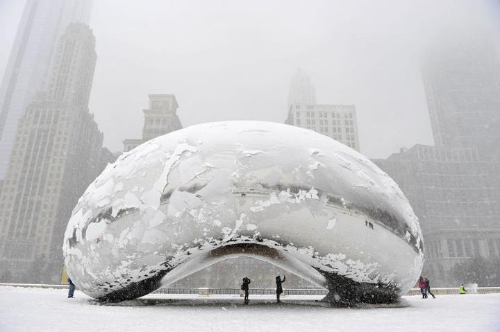 haricot Chicago neige the Bean
