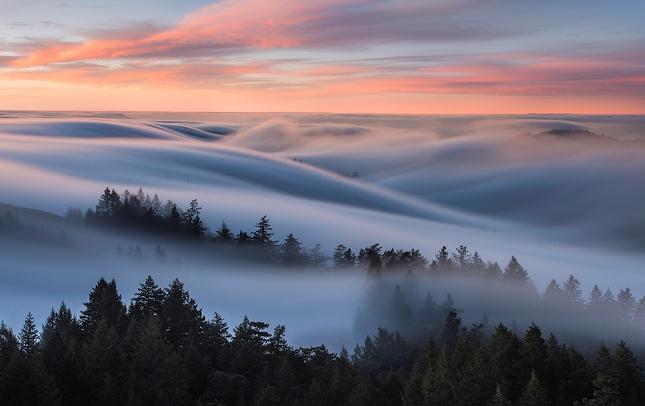 brouillard-mer-de-nuages-nick-steinberg-1