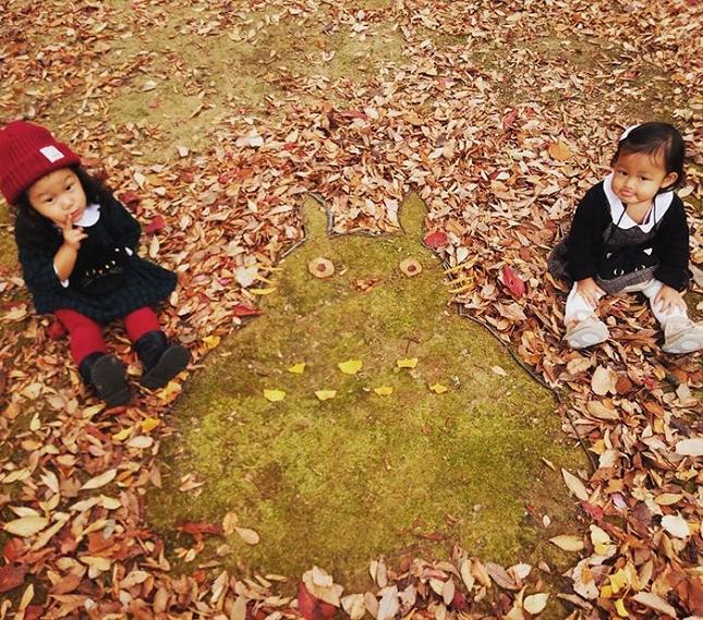 feuilles-mortes-japon-oeuvres