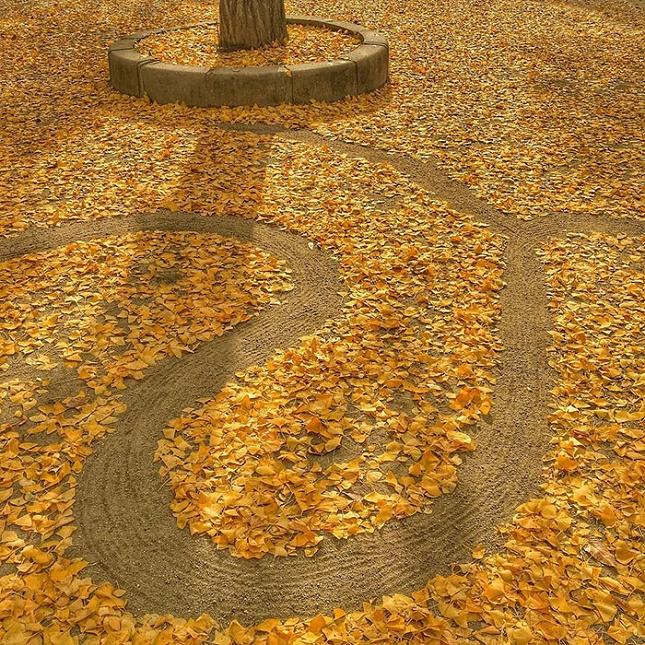 feuilles-mortes-japon-oeuvres-12