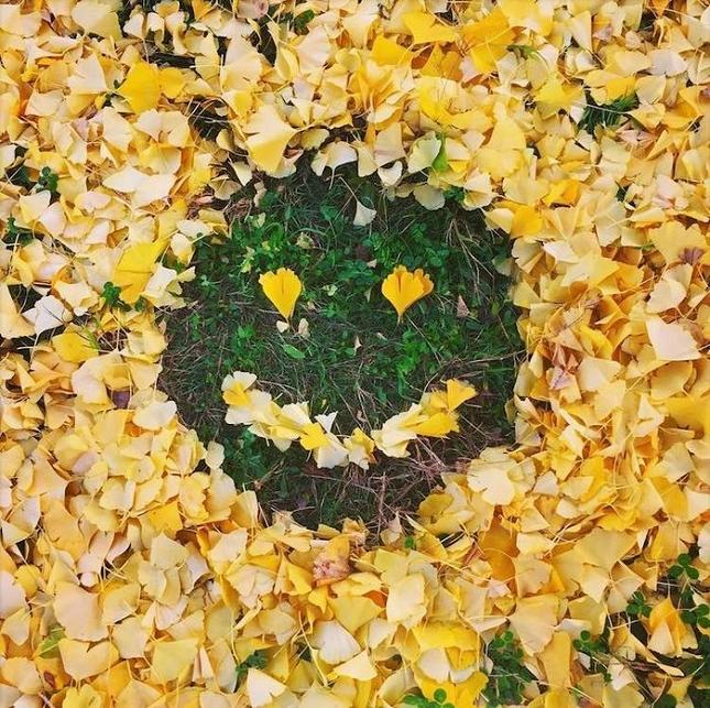 feuilles-mortes-japon-oeuvres-16