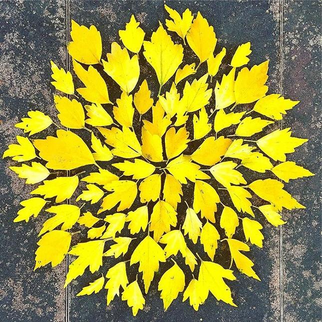 feuilles-mortes-japon-oeuvres-5